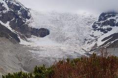 Der große Adishi-Gletscher Lizenzfreie Stockbilder