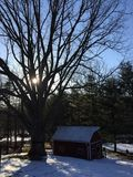 Der große Baum und die Scheune bei Sonnenuntergang an einem Winter-Tag Lizenzfreies Stockbild