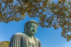 Der große Buddha in Kamakura Stockbild