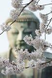 Der große Buddha in Kamakura Japan/Daiputsu Stockbild