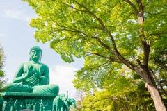 Der große Buddha von Nagoya mit ruhigem Platz im Wald lizenzfreies stockfoto