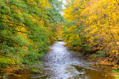 Der große Fluss in die Stadt von schlechtem Blankenburg Lizenzfreies Stockfoto
