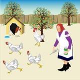 Der Grund, warum Hühnersuppe gesund ist lizenzfreie abbildung