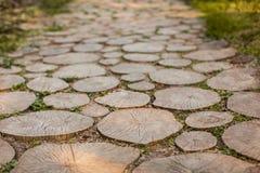 Der hölzerne Fußweg von Stümpfen im Park Stockbild