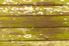 Der hölzernen des Schmutzes brauner Beschaffenheitshintergrund und grünen Form Lizenzfreie Stockbilder