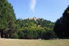 Der Hügel Stockbild