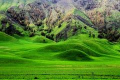 Der Hügel Stockfotografie