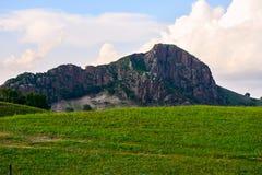 Der Hügel auf der Wiese Stockbilder