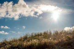 Der Hügel von Dünen im Sonnenlicht Lizenzfreie Stockfotografie