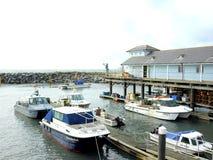 Der Hafen, Ventnor, Insel von Wight. Stockfotos