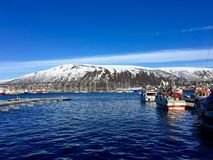 Der Hafen von Tromsø, Norwegen lizenzfreie stockfotos