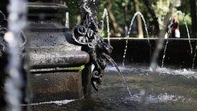 Der Hauptbrunnen des Löwes Wasserstrahl stock footage