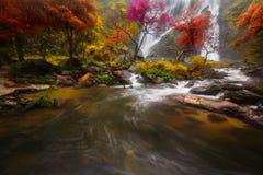 Der Herbst stockfoto