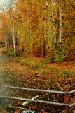 Der Herbst lizenzfreies stockbild