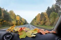 Der Herbst im Auto Lizenzfreie Stockfotos