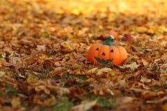 Der Herbst ist da.... Kürbis mit lächelndem Gesicht auf Herbstlaub royalty free stock image