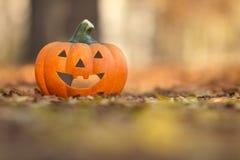 Der Herbst ist da.... Kürbis mit lächelndem Gesicht auf Herbstlaub stock images