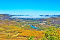 Der Herbstwald und blaue der Flussnebel Stockfotos