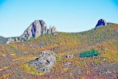 Der Herbstwaldlamahügel Lizenzfreie Stockfotos