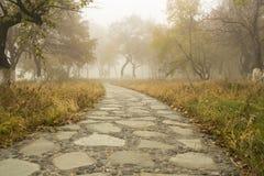 Der Herbstwaldweg Lizenzfreie Stockfotos