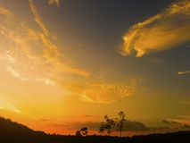 Der Himmel über Ölpalmenplantage stockfotografie