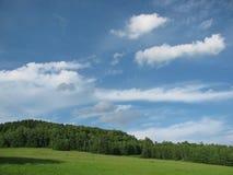 Der Himmel über dem Wald lizenzfreie stockbilder