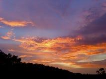 der Himmel über den Bäumen im Wald lizenzfreie stockfotos