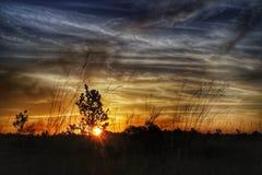 Der Himmel ist auf Feuer Stockfoto