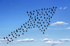 Der Himmel ist die Grenze Stockfotografie