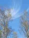 Der Himmel kann herein Stockbild