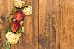 Der Hintergrund, der mit Gelbem und Rot hölzern ist, verwelkte Rosen Lizenzfreie Stockfotografie