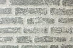Der Hintergrund, in Form eines grauen Ziegelsteines, ist für die Werbung, Texteinfügung passend Stockfotografie