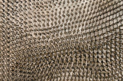 Der Hintergrund von Nägeln, der in das metallische shi gehämmert wurde Lizenzfreie Stockfotos