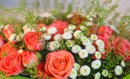 der Hintergrund von schönen Blumen Lizenzfreie Stockfotos