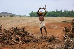 Der Holzfäller in einem valey nahe indischer Stadt Gokarna Lizenzfreie Stockfotos