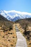 Der Hooker-Gletscher, Berg-Koch, Neuseeland Lizenzfreie Stockfotografie