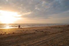 Der Hund am Sonnenaufgang gehen Stockfotografie