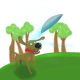 Der Hund springend, um Frisbee-UFO abzufangen Stockbild