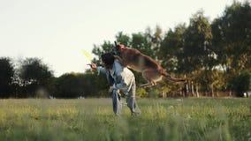 Der Hund springt von der Rückseite der Frau, die versucht, den Frisbee zu fangen stock video