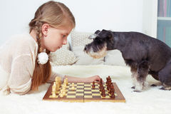 Der Hund unterrichtet das Kind, Schach zu spielen Ihre Drehung Stockfoto