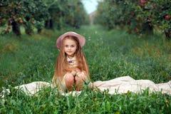Der Hutkorbsammelnäpfel der Mädchenerntegartenbäume roter rosa Hintergrund des grünen Grases stockbilder