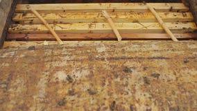 Der Imker öffnet den Bienenstock Nahaufnahme stock footage