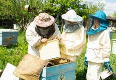 Der Imker zeigt den jugendlichen Jungen Arbeit mit Bienen Großvater und Enkelkinder im Bienenhaus Horizontaler Rahmen stockfotografie