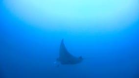 Der Indische Ozean Lizenzfreie Stockfotos
