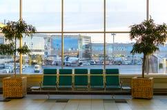 Der Innenraum mit Grün sitzt, großes Fenster, Bäume des pulkovo Flughafens in St Petersburg Stockbild