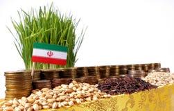 Der Iran fahnenschwenkend mit Stapel Geldmünzen und Stapel des Weizens stockfotografie