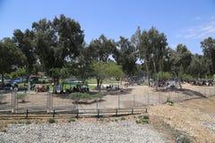 Der Israeli feiern Israel-` s jährlichen Unabhängigkeitstag BBQ im Park im Bier Sheba draußen kochend Stockfoto