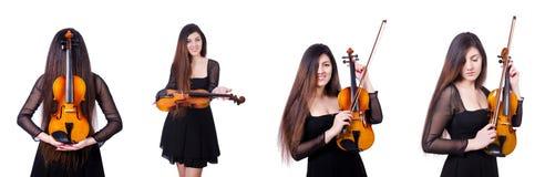 Der junge Ausführende mit Violine auf Weiß stockfotos