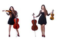 Der junge Ausführende mit Violine auf Weiß stockfotografie