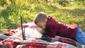 Der Junge betrachtet den Computer